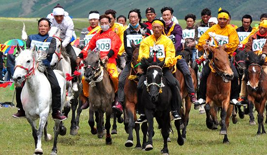Discovery Tour during Yushu Horse Racing Festival 2020