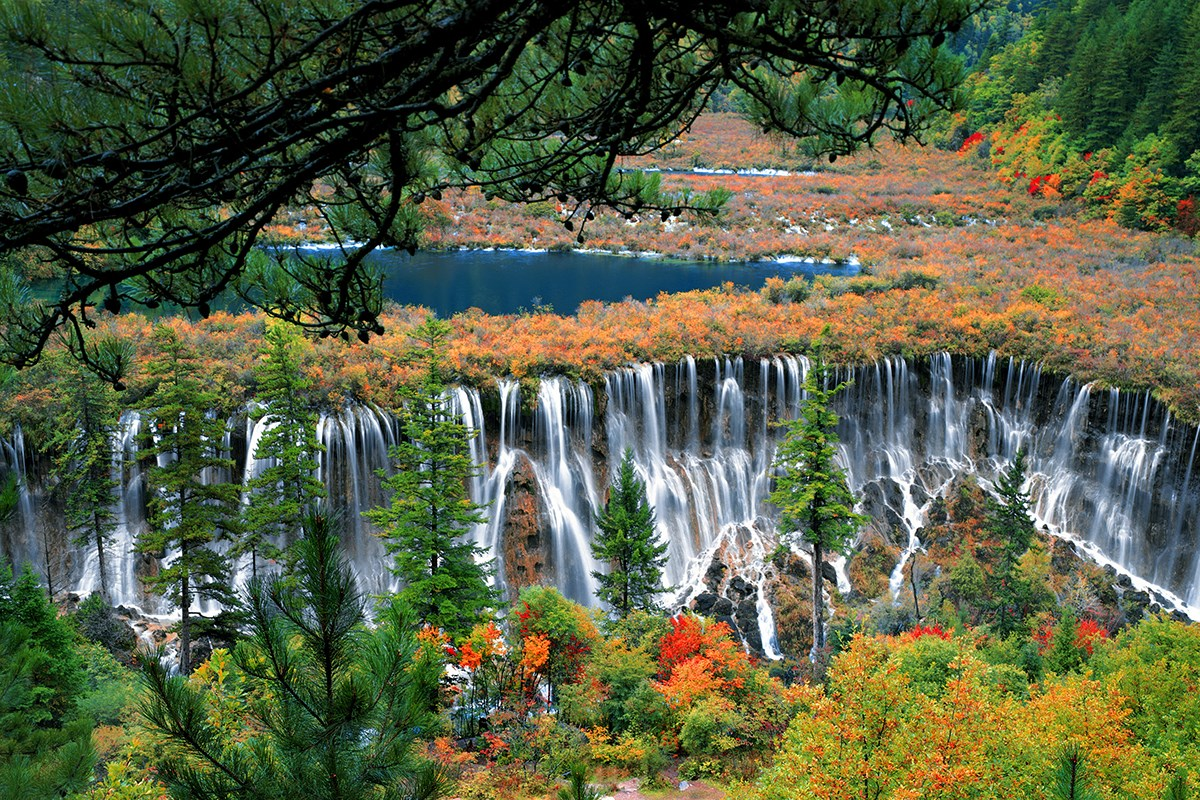 Jiuzhaigou National Park | Photo par Wang Ning